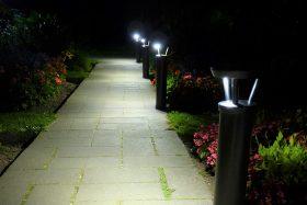 Solar bollard lights in a garden