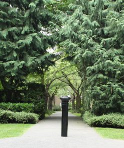 R-7573 decorative bollard on path in front of large trees and greenery