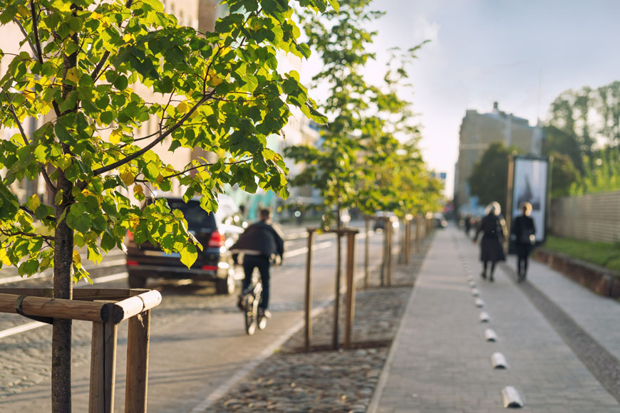 A cyclist and several pedestrians travel along a street lined with young trees
