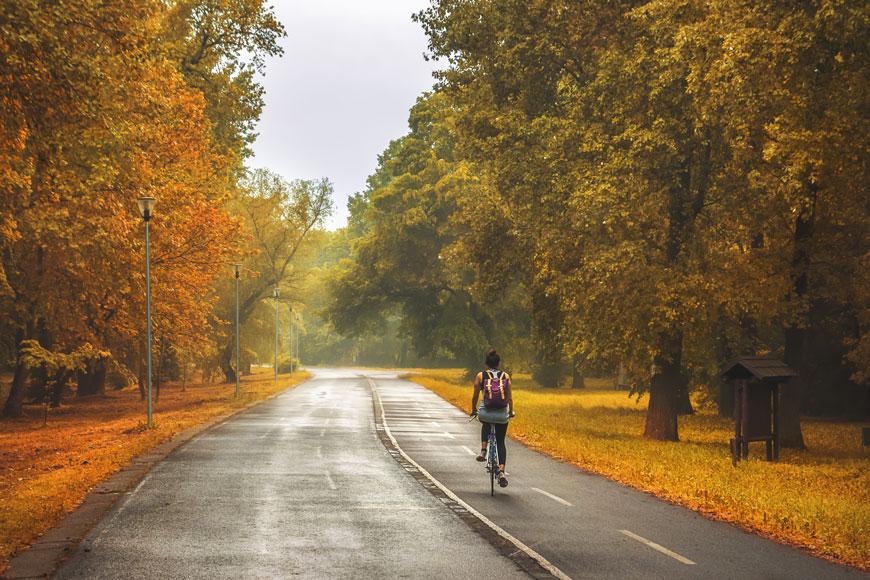 A person on a bike peddles along a bike path through a park in the autumn