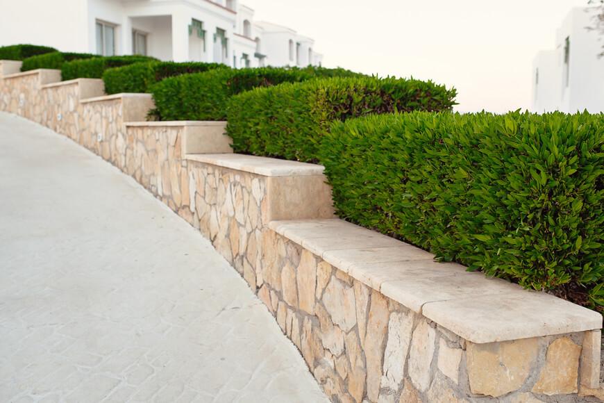 Landscape design balances garden plants among urban setting