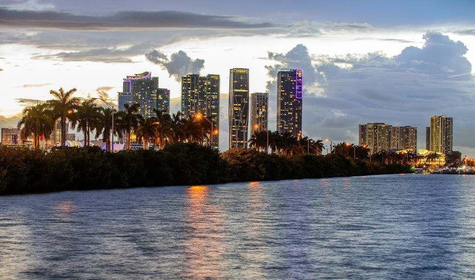 An image of the Miami skyline from the water, with palm trees in the foreground and towers behind, at sunset