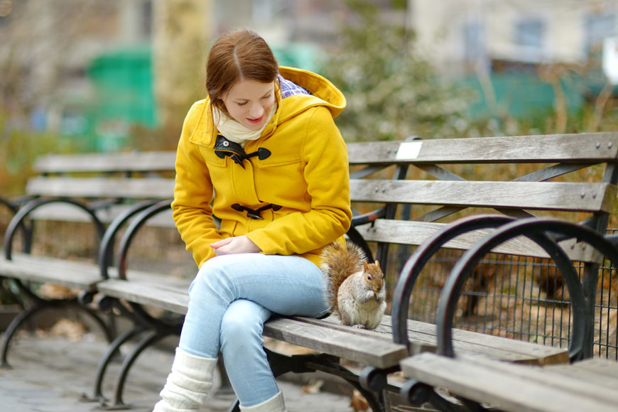 A woman sits on a wood bench watching a grey squirrel