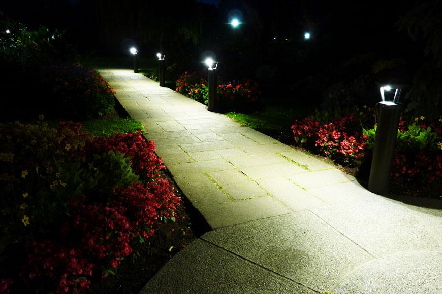 Solar lighting bollards illuminate a flower-bordered path at night