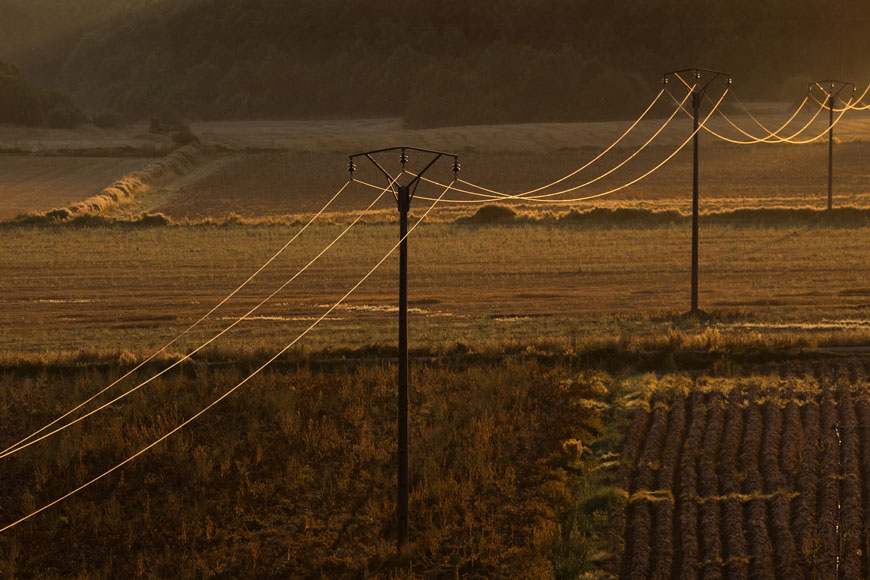Telephone wires stretch over a farmer's field of crops
