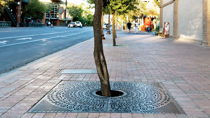 Raw cast iron tree grate with lacy look protects a tree on a wide cobblestone sidewalk