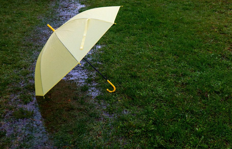 A yellow umbrella lies on rain-soaked grass near shallow pooling water.