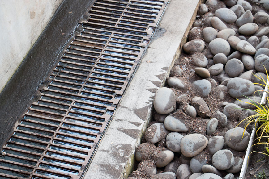 A trench grate lies next to the rocks at the edge of a bioswale
