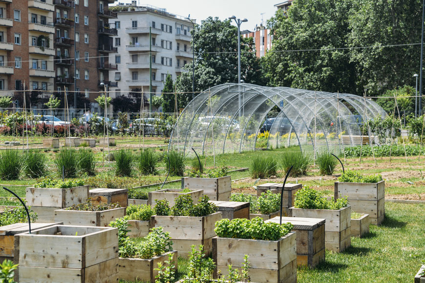 A series of walk-up apartment buildings sits behind a community garden