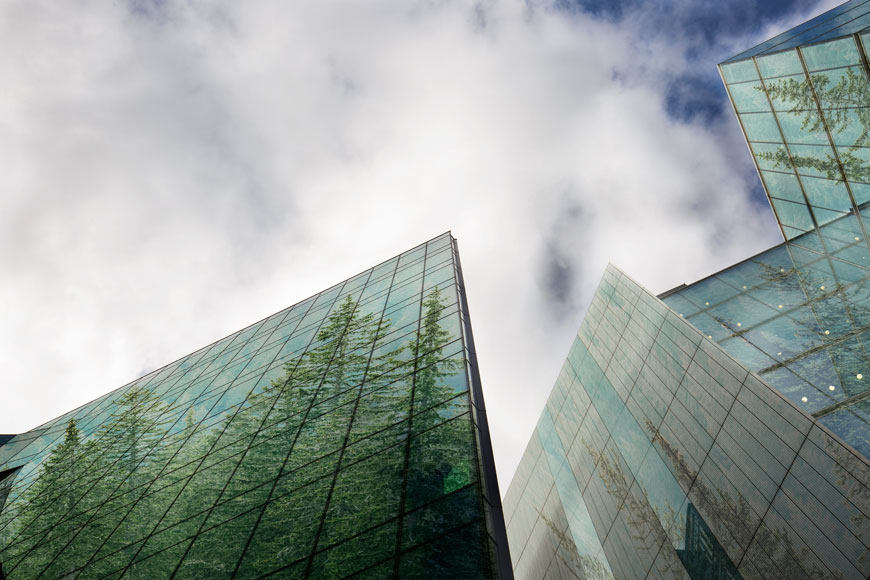 Skyscrapers reflect the images of a forest of trees