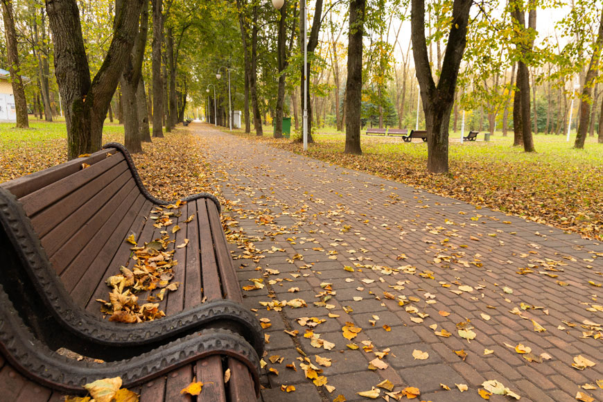 Brown wood plastic composite bench with interesting raised patterns on ends is covered with yellow leaves.